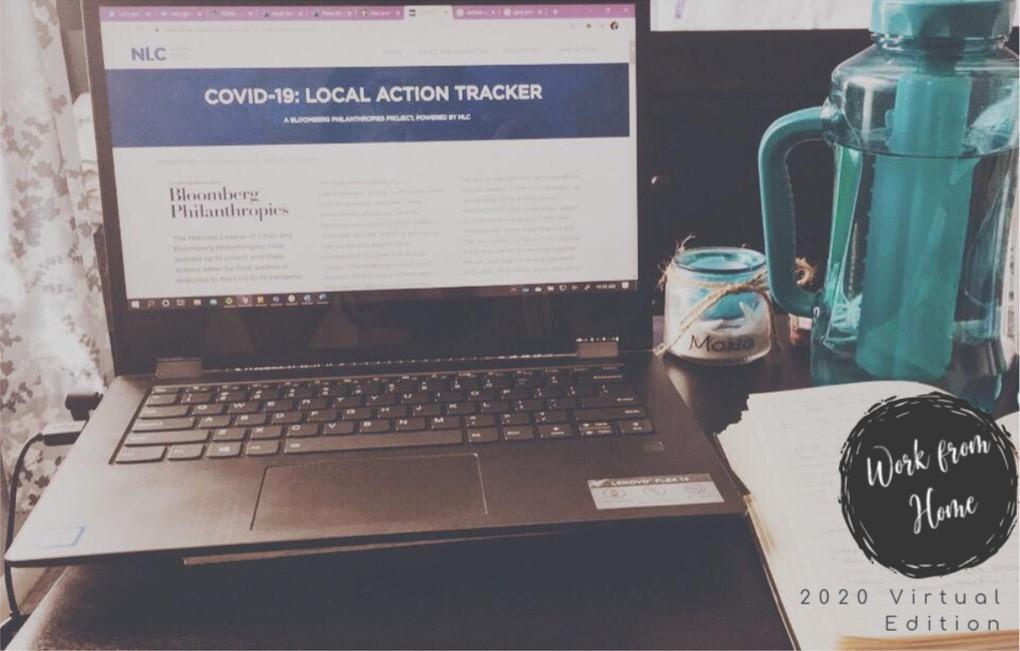 A Virtual Karel Fellow